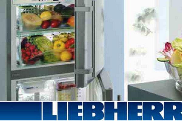 Слышатся посторонние звуки холодильника Liebherr
